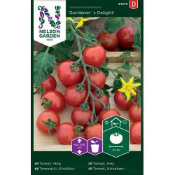 Körsbärstomat Gardeners delight