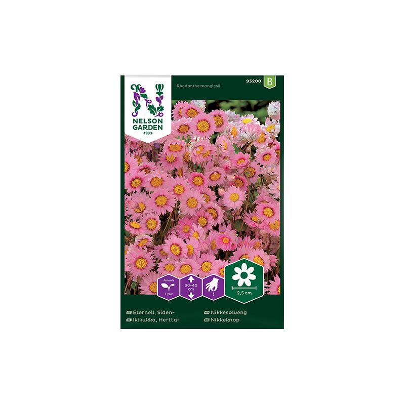 Sideneternell rosa