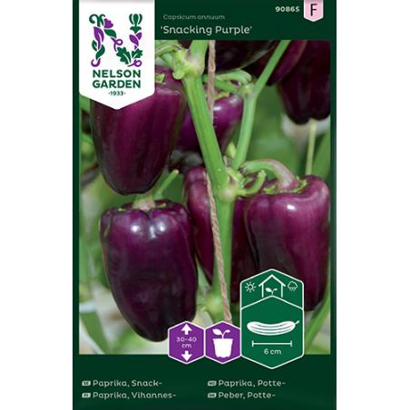 Snackpaprika lila Snacking purple